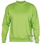 Sudaderas Roly Clásica color Oasis green  :: Ref: 114
