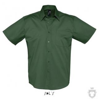 Camisas Sols Brooklyn color Bottle Green :: Ref: 264